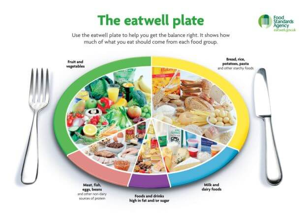 The eatwell plate showing the food groups