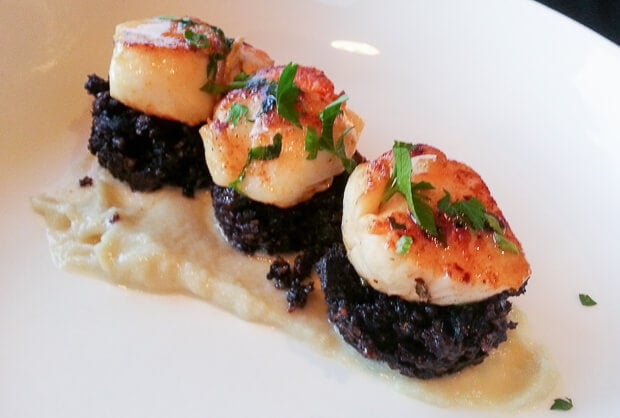 Pan fried scallops with black pudding and shallot puree