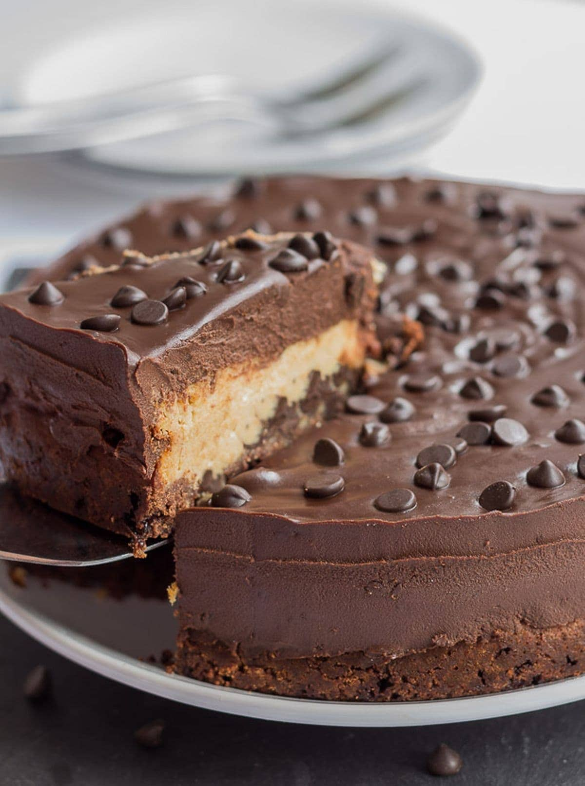 A slice of peanut butter chocolate chip cheesecake being lifted from the rest of the cheesecake.
