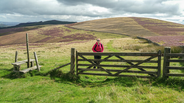 Southern Upland Way fence and style before ascent to Three Brethren.