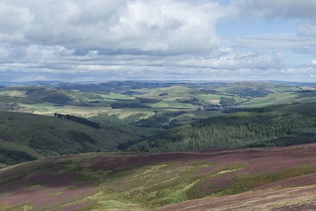 Village of Clovenfords in the distance viewed from Southern Uplands.