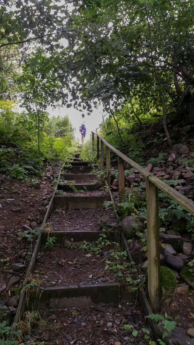 Steps at start of circular walk.
