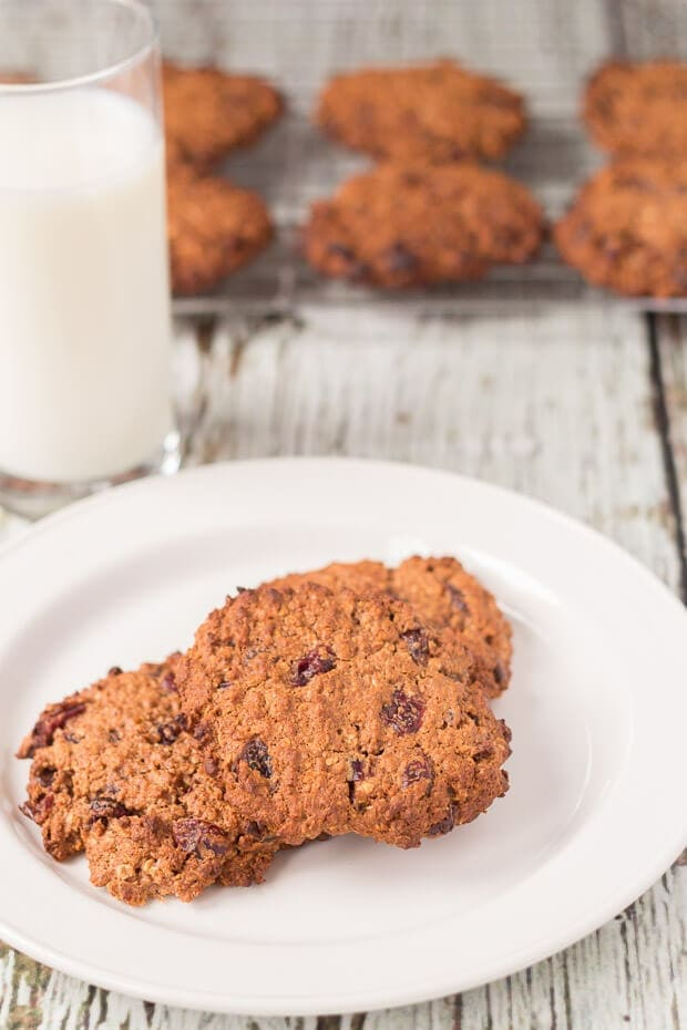 A plate of two wholemeal chocolate cranberry cookies with a glass of milk behind and the rest of the cranberry cookies cooling on a wire backing tray in the background.