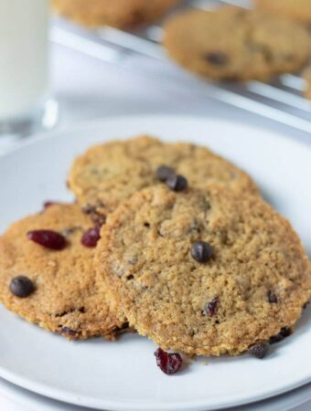 A plate of 3 delicious dark chocolate chip cranberry cookies served and ready to eat.